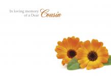 of a Dear Cousin